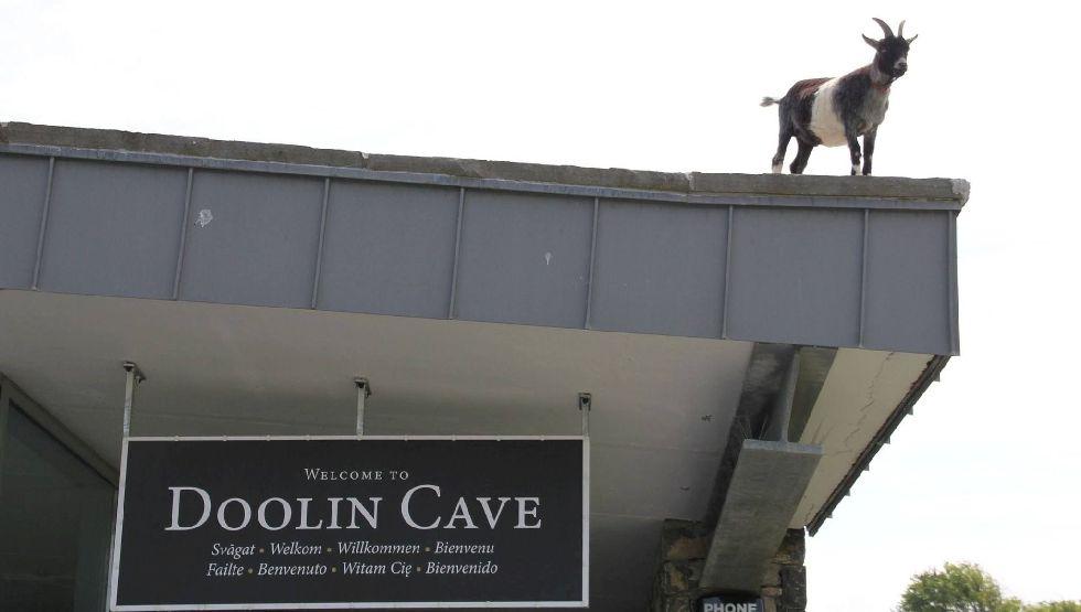 Doolin Cave Activities Do